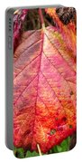 Blackberry Leaf In The Fall 3 Portable Battery Charger