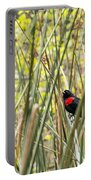 Blackbird In Reeds Portable Battery Charger