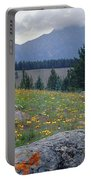 1m3923-blackeyed Susans Portable Battery Charger