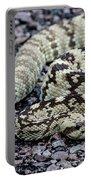 Blacktailed Rattlesnake Portable Battery Charger