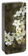 Blackthorn Or Sloe Blossom  Prunus Spinosa Portable Battery Charger