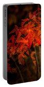Blaze Of Leaves Portable Battery Charger