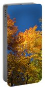 Blazing Autumn Colors - Just Lift Your Head Portable Battery Charger
