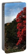 Blazing Maple Tree Portable Battery Charger
