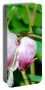 Bleeding Hearts In A Row Portable Battery Charger