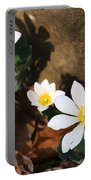Bloodroot Beauty Portable Battery Charger