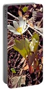 Bloodroot Reaching For The Spring Sun Portable Battery Charger