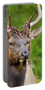 Bloody Elk Portable Battery Charger