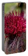 Blooming Spear Thistle Portable Battery Charger