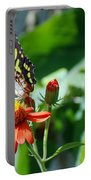 Blooms And Butterfly4 Portable Battery Charger