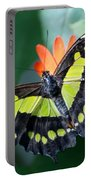 Blooms And Butterfly5c Portable Battery Charger