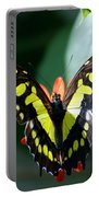 Blooms And Butterfly6c Portable Battery Charger
