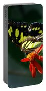 Blooms And Butterfly7c Portable Battery Charger
