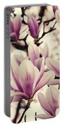 Blossoming Of Magnolia Flowers In Spring Time Portable Battery Charger