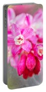 Blossoms Of Spring - April 2014 Portable Battery Charger