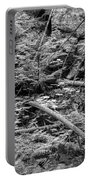Blow Down Glacier National Park Bw Portable Battery Charger