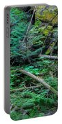 Blow Down Glacier National Park Painted Portable Battery Charger