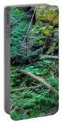 Blow Down Glacier National Park  Portable Battery Charger