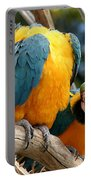 Blue And Gold Macaws Portable Battery Charger