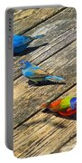 Blue And Indigo Buntings - Three Little Buntings Portable Battery Charger