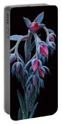 Blue And Pink Succulent Portable Battery Charger