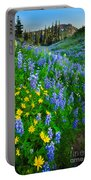 Blue And Yellow Hillside Portable Battery Charger