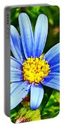 Blue Aster In Park Sierra Near Coarsegold-california   Portable Battery Charger