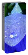 Blue Balance Portable Battery Charger