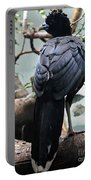Blue Billed Currasow Portable Battery Charger