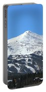 Blue Bird Day Portable Battery Charger