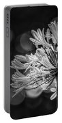 Blue Blooms B/w Portable Battery Charger