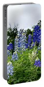 Blue Bonnet Carpet V9 Portable Battery Charger