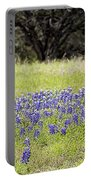 Blue Bonnets Fire Hydrant V2 Portable Battery Charger