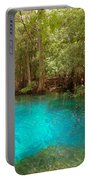Blue Chill 1 Portable Battery Charger