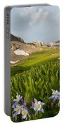 Handie's Peak And Blue Columbine On A Summer Morning Portable Battery Charger by Cascade Colors