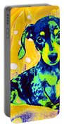 Blue Doxie Portable Battery Charger