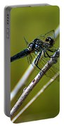 Blue Dragonfly 3 Portable Battery Charger