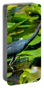 Reddish Egret Among The Lily Pads Portable Battery Charger