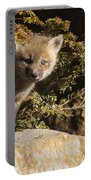 Blue Eyes Baby Fox Portable Battery Charger