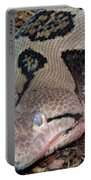 Blue Eyes Snake Portable Battery Charger