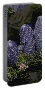 Blue Fir Cones 2 Outlined Portable Battery Charger