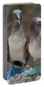 Blue-footed Boobies Portable Battery Charger
