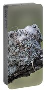 Blue-gray Gnatcatcher Nest Portable Battery Charger