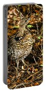 Blue Grouse Portable Battery Charger