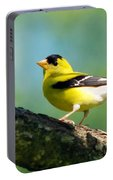 Blue Heart Goldfinch Portable Battery Charger