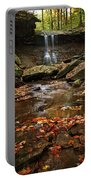 Blue Hen Falls In Autumn Portable Battery Charger