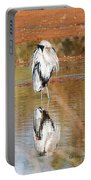 Blue Heron Grooming Portable Battery Charger