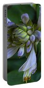 Blue Hosta Portable Battery Charger