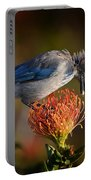 Blue Jay 1 Portable Battery Charger