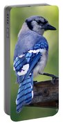 Blue Jay At Feeder Portable Battery Charger